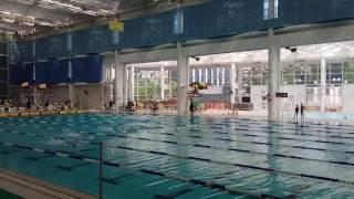 全港學界小學區際游泳比賽