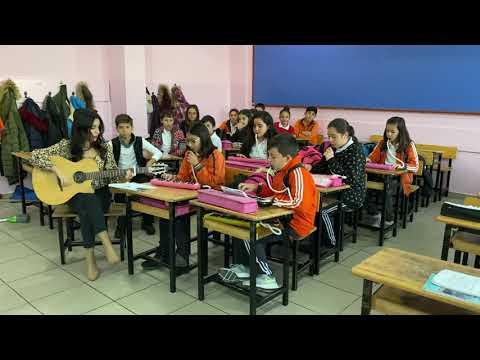 Bana da söyle -Ziynet Sali -melodika-gitar cover