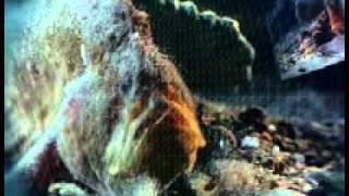 Морской черт.wmv