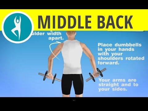 back and biceps workout with kali / dumbbells kettlebells