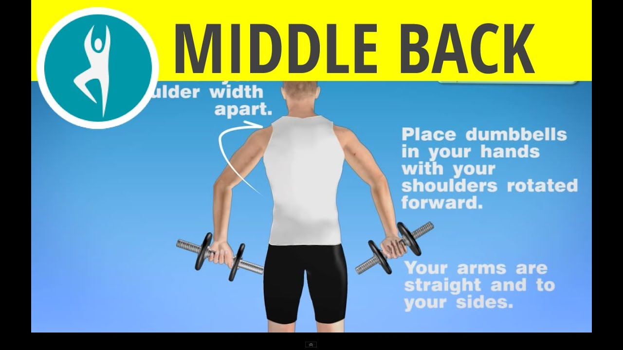 Shoulder And Middle Back Workout With Dumbbells Exercise At Home Weights