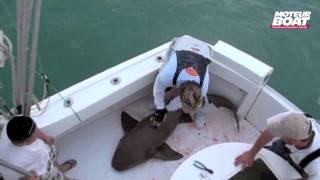 Le petit journal de Miami - Episode 4 - moteurboat.com