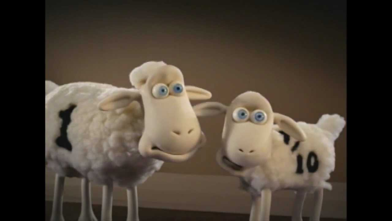 Serta Sheep Family Youtube