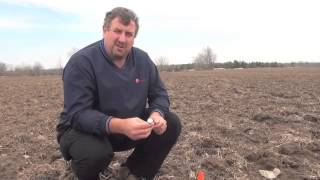 Corn School - Seedbed Planting Tips - Ken Currah