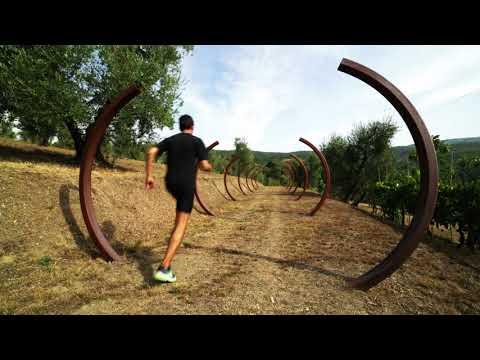 Sicilia svelata - Palermo: Villa Giulia svelata from YouTube · Duration:  21 minutes 1 seconds