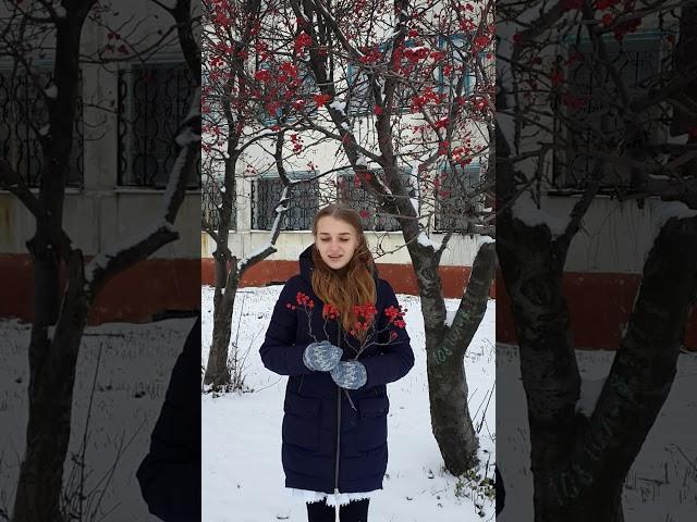 Изображение предпросмотра прочтения – АлинаКовальчук читает произведение «Красною кистью...» М.И.Цветаевой