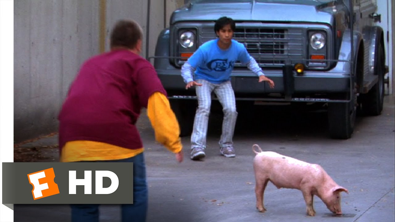American Pie Presents Beta House Full Movie american pie presents beta house (6/8) movie clip - parkour pig chase  (2007) hd
