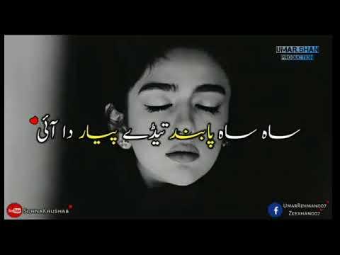 Zahid Ali Dhola Sanu Pyar NashyDohra Whatsapp Status Song