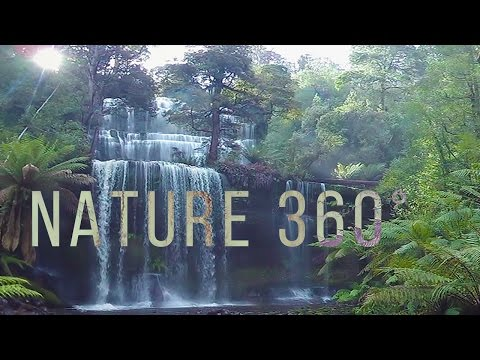Virtual Nature 360° - 5K Nature Meditation for Daydream, Ocu