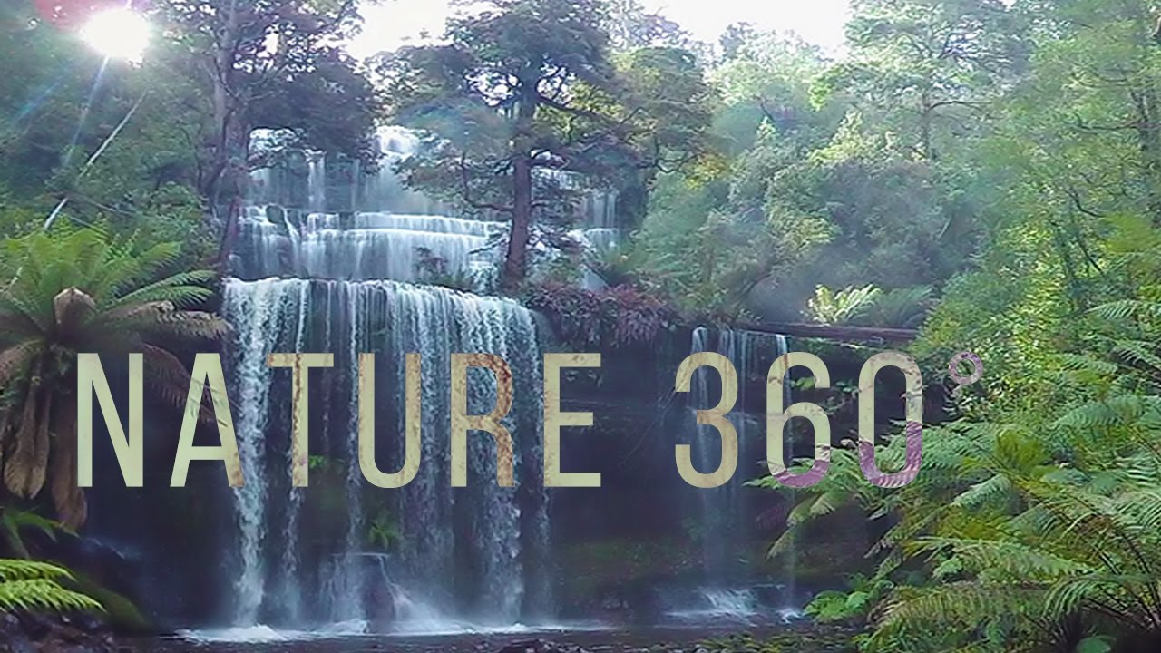 Virtual Nature 360° - 5.7K Nature Meditation for Oculus Quest
