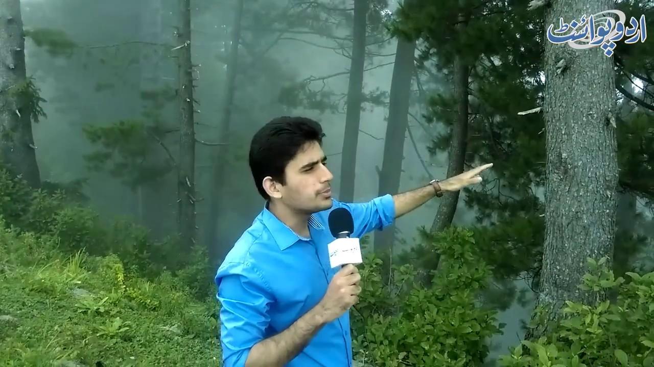 Northern Areas of Pakistan - Siri Paye, Shogran, Kaghan Naran