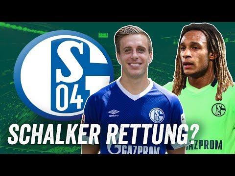 Diese Spieler könnten die Knappen retten! Die Top 5 Transfers für Schalke 04