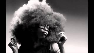 Erykah Badu - Next Lifetime