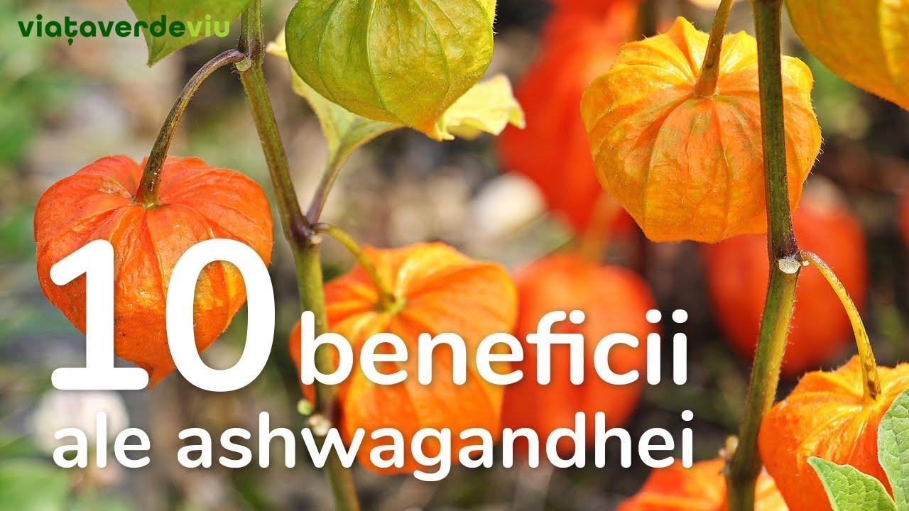 beneficiile pierderii în greutate ashwagandha