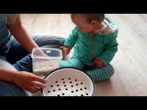 Развитие мелкой моторики. Игры с фасолью. Занятие с Алисой (1 год 1 месяц)