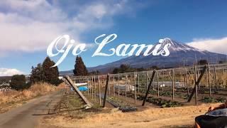 Ojo Lamis - Gitaran Sore