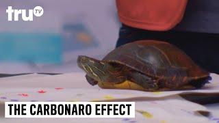 The Carbonaro Effect - Craft Turtle