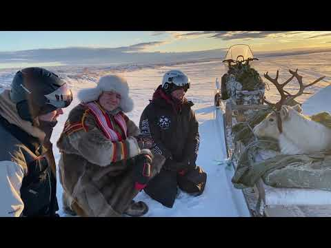KEiiNO sings Spirit in the Sky for a Reindeer on the Tundra in Kautokeino