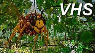 Симулятор пчелы (трейлер) - русский и ламповый - VHSник