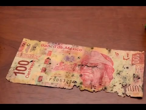 Image result for billete dañado mexicano