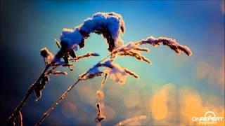 Aleksey Beloozerov | Electric Snowstorm (Original Mix)