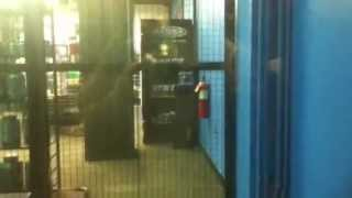 A.c.e Hydraulic Scenic Elevator At Bally Total Fitness Gym In Jamaica Ny