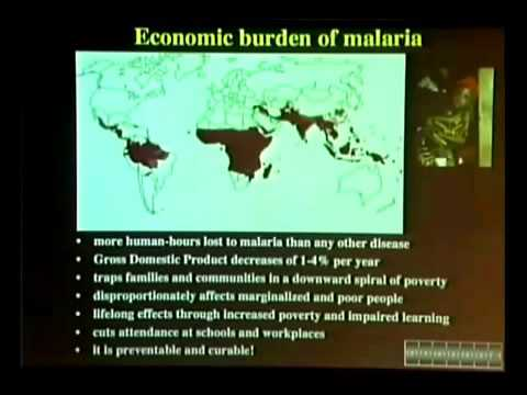 Malaria: Penyakit Global