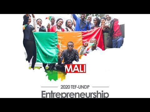 LIVE: TEF - UNDP Mali Entrepreneur Information Session 4
