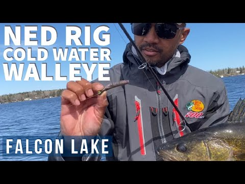 How To NED RIG For WALLEYE On Falcon Lake | Manitoba Fishing Opener