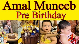 Amal Muneeb's Birthday || Pre-Birthday || Abeeha Entertainment