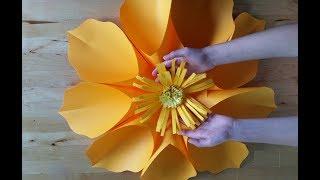 Как сделать огромный цветок своими руками из бумаги. Простой вариант