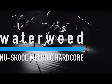 waterweed - Music is Music (Music Video)