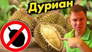 Пробуем ДУРИАН – самый вонючий фрукт в Мире! Челлендж в Тайланде