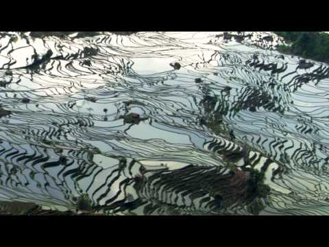 BBC Human Planet S01 2011 1080p BluRay x264 DTS WiKi Sample