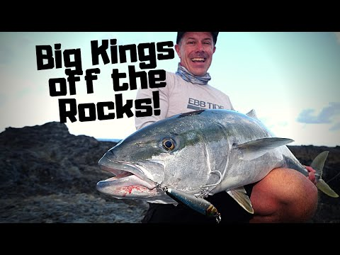 Topwater Kingfish From The Rocks! LoCAB X Ebb Tide
