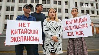 Казахи протестуют против экономической экспансии Китая
