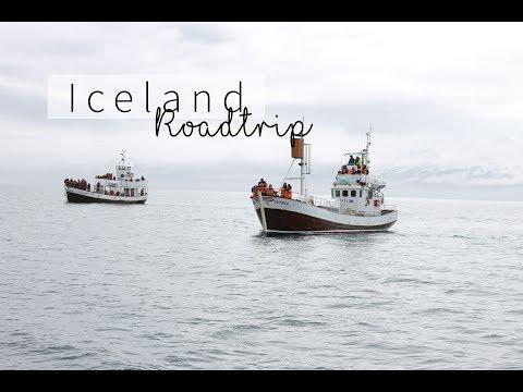 ROADTRIP TROUGH ICELAND | Travel Vlog