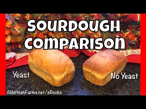 Sourdough Bread Comparison | Commercial Yeast vs No Added Yeast