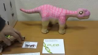 Интерактивный робот-динозавр PLEO(Подробнее - http://tdinteres.ru/shop/roditelyam/igrushki-dlya-detey/interaktivnye_igrushki_dlja_devochek_i_malchikov/interaktivnyj_robot-dinozavr_pleo ..., 2016-01-28T17:16:11.000Z)