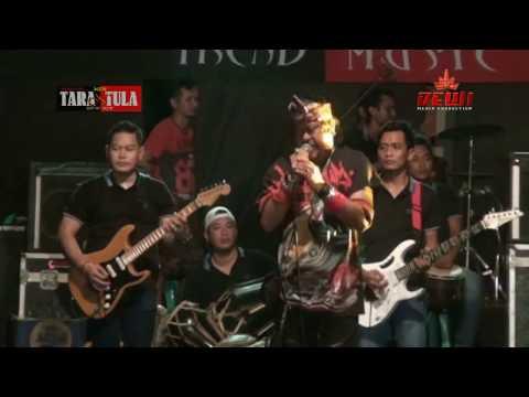 LAILAHAILLALLAH  -  NEW TARANTULA Live Pepe
