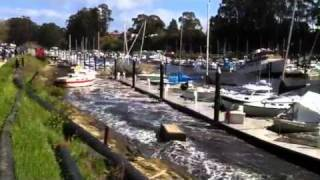 Tsunami hits Santa Cruz Harbor