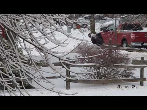 Things you might see in - Bradford West Gwillimbury Ontario - Freezing Rain by HvP