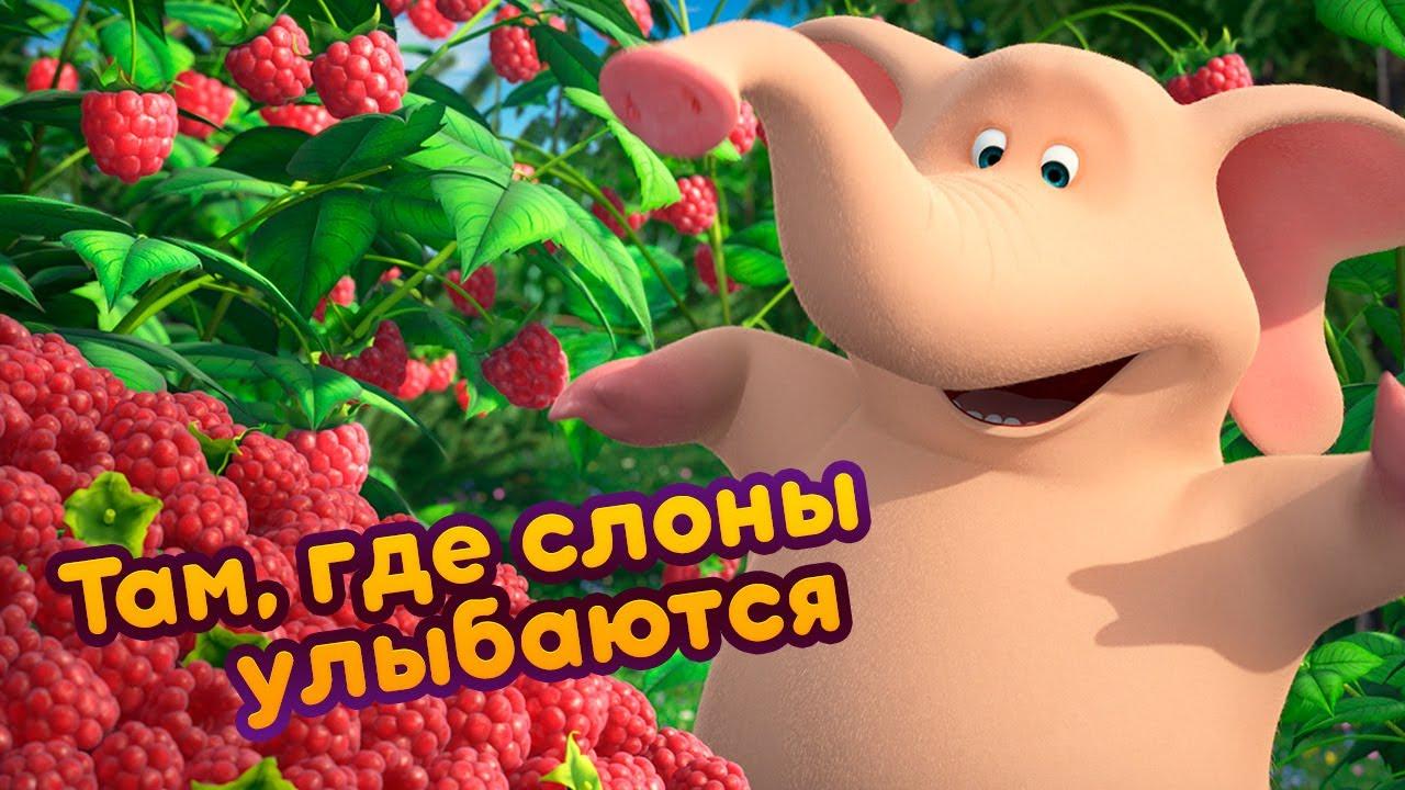 Маша и Медведь - 🐘 Там, где слоны улыбаются 😄  (Чай со слоном) 🎶 Новая песня!
