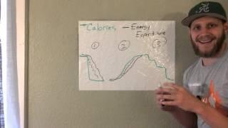 Chalk Talk # 3 - Calorie Intake vs Energy Expenditure