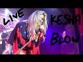 Blow - Kesha and the Creepies LIVE