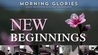New Beginnings - Morning Glories