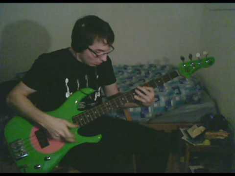 RHCP - Taste The Pain (Long Version) [Bass Cover]