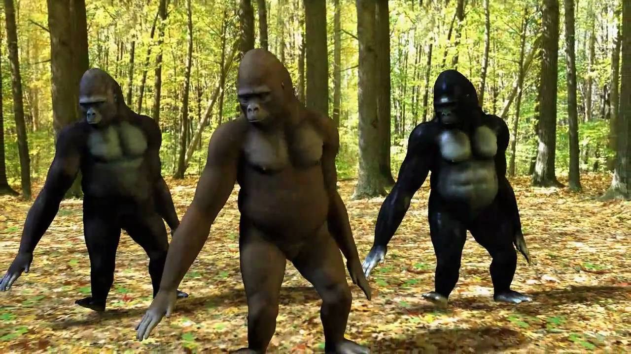 Ego - The Crazy Things We Do Official Music Video (Dancing Gorillas) -  YouTube