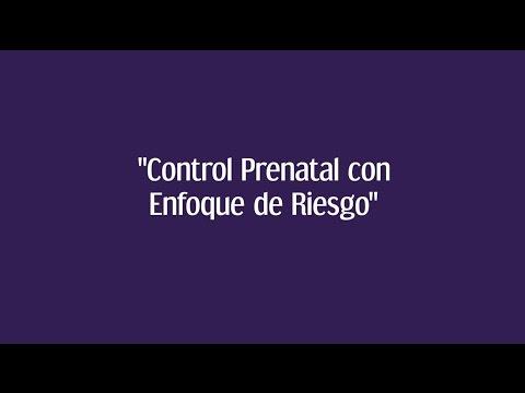 Control Prenatal Con Enfoque De Riesgo