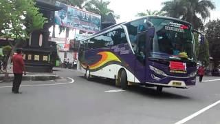 Telolet 3 unit bus AGI atau ANUGERAH GEMILANG INDONESIA di pipp Blitar